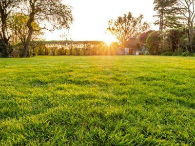 Få 3 tilbud på hjælp til havearbejde